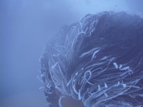 北海道の内陸にもものすごく寒いところがあるけど、そんなところの露天風呂もこうなるのかな…。