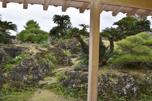 庭は南国らしく、蘇鉄が植えてあります。