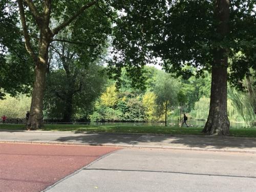 アドミラルティ・アーチからホースガーズに向かって歩きます。<br />王立公園のセント・ジェームス・パークを横手に見ながら・・・