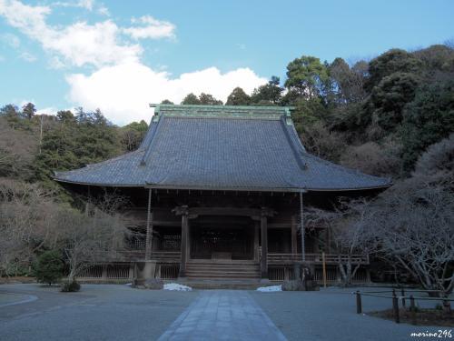 妙本寺 祖師堂<br /><br />鎌倉最大級の木造仏堂建築、この左手に梅が咲いています。<br />また、4月には海棠の花(祖師堂の手前の両側)も楽しませてもらえます。