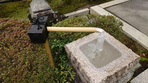 この日も朝からとても寒かったんですが、それがわかる写真。<br />これは聴松院というお寺のお庭にあったもの。<br /><br />ここまで凍りますか。