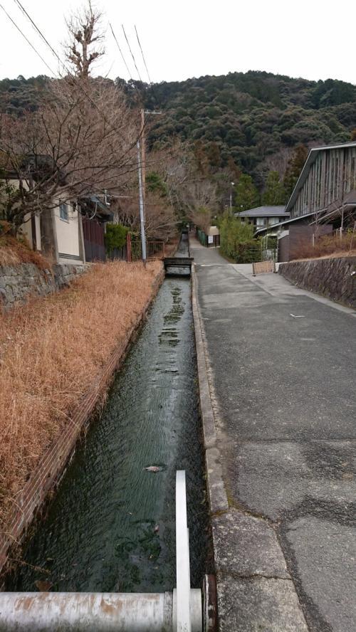琵琶湖から流れてくる水は本当にきれいです。<br />今日の目的はとりあえず哲学の道の散策。<br />なので、南禅寺の方丈もすっ飛ばして次へ向かいます。<br /><br />多分、今年もう1回は南禅寺に来る予感がしています。