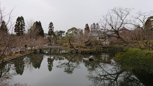 宝生池をくるっとまわって、拝観は終了。<br />写真にはない釈迦堂のふすま絵、唐門、非田梅とか三鈷の松とかを見ているうちに、すっかりお昼の時間に。