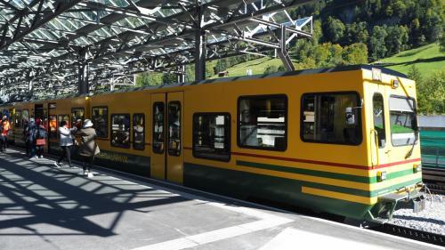 天気もいいので、この登山列車でクライネシャイデックまで登ります!?(笑)<br />Wengernalpbahn (WAB:ヴェンゲンアルプ鉄道)は、ラウターブルンネン~クライネ・シャイデック~グリンデルワルトを結ぶ登山鉄道です。<br /><br />ラウターブルンネン~クライネ⇔シャイデック 60CHF(1CHF≒115円)<br /><br />