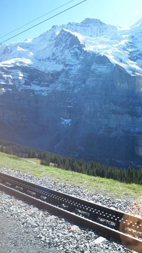 登山列車は、車輪の間に歯車をかませて登ります。