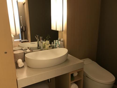 スパの個室にはシャワーやトイレもついてます。<br />ここでコンタクトを外しました。