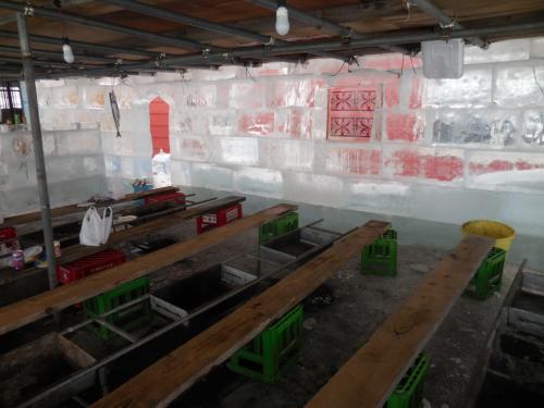 一面氷で覆われたあいすらんど共和国です。ここでバーベキューを食べることができます。<br /> 妻はここも楽しみに紋別に来ました。<br />