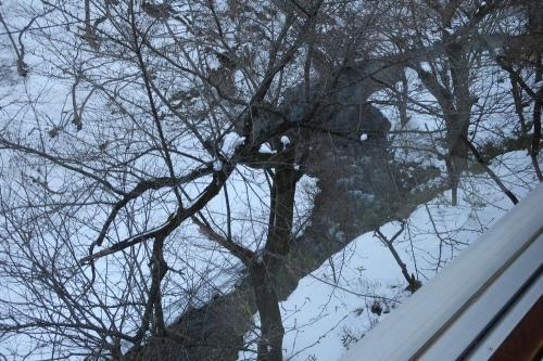 窓の外は雪景色。