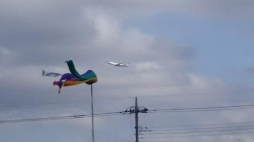 成田ですから、お寺も飛行機も同時に見えました。