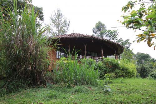 私のお部屋。山の中腹に作ったホテルのようで敷地内は坂が多いです。<br />ルワンダよりは蒸し暑く、虫も多い!
