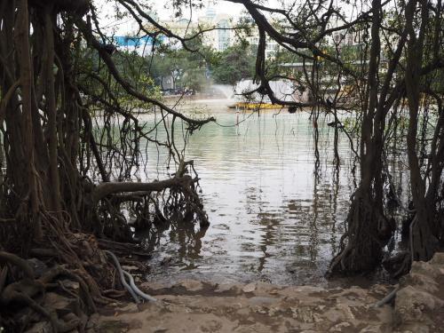池の中心から外側を見た図。<br /><br /><br />一応説明すると鎮国寺はこんな感じの位置にあります。<br /><br /><br />