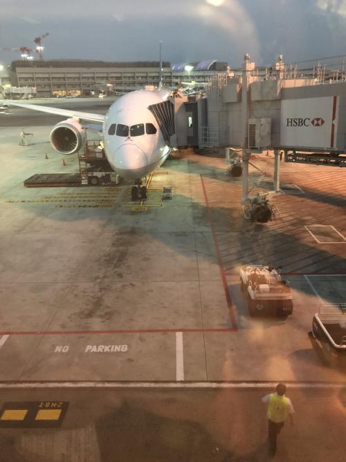 ANA便で出発です!!<br />しっかり寝て、朝からアクティブに行動します。