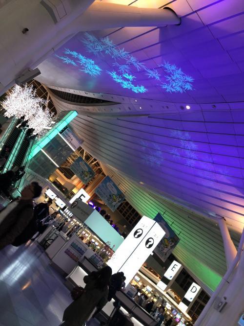 羽田空港のイルミネーションは、綺麗でした!今回は、深夜便で行く南国シンガポール!!<br />寝てる間に到着、そして日本よりマイナス1時間です。