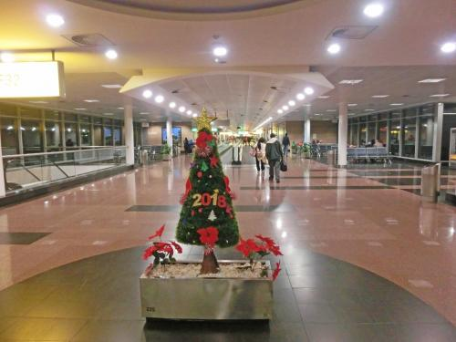 12時間のフライトの後、カイロには現地時間早朝4時半(日本時間午前11時半)に到着。早朝なので、空港はガランとしている。<br /><br />1月末になっているが、クリスマスツリー(?)があった。