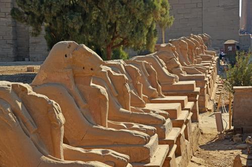 カルナック神殿への参道の両側には、羊の顔のスフィンクスが並んでいる。