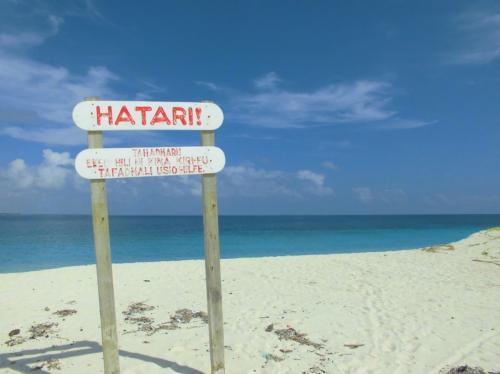 この看板はビーチの曲がり角に設置されていて、HATARIというのはスワヒリ語で危険という意味です。<br />確かに、この看板の手前側は比較的穏やかなのですが、この看板の向こう側は潮の流れが速く、波も高めでした。