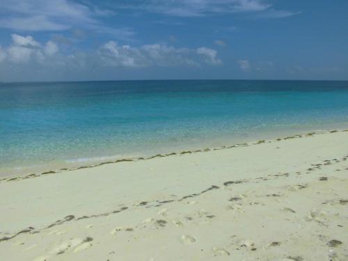 本当に綺麗な海で癒されます!!