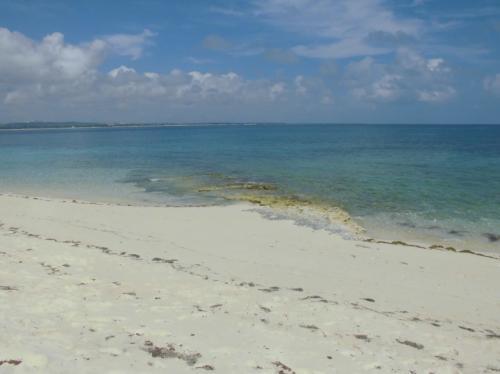 ビーチの砂はきめ細かく波に被る部分は締まっていて歩きやすかったです。
