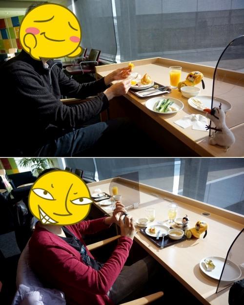 朝からモリモリ食べる旦那さんを見つめる2匹と、食べる前にとりあえず撮られる2匹。