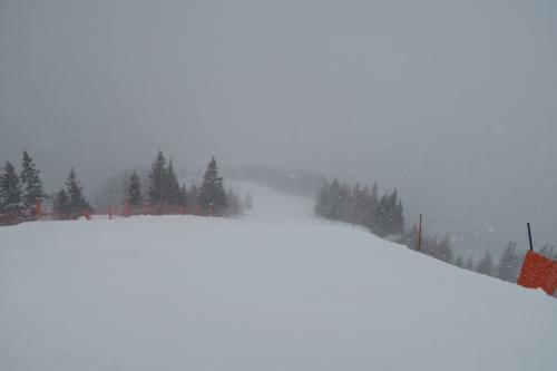 下山コースのピステ2に入りました。雪質はガリガリで脚の弱っている自分にはキツイ!!