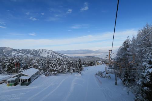 前夜の40-50cmの降雪があったので雰囲気が良いですね。コースは緩斜面です。