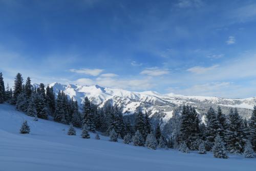 スキー場の西側にある美しい雪山です。名前はわかりませんが、あっちもスキー場にすればいいのに・・・