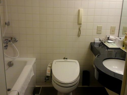 バスルーム。<br />便座に座るとウオッシュレットの準備で水音がするタイプ。<br />夜はうるさいかも。<br />流す音も結構大きい。