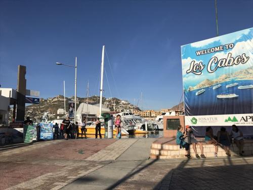 タクシーでカボサンルーカスまで行きました 40USD 30分程<br />ここにはクルーズ船が停泊します<br />