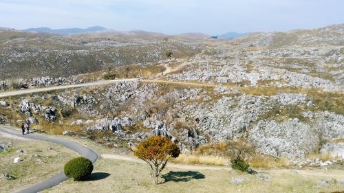2月18日(日)に地元の人たち、消防団の人たち合わせて1,100人の人たちで山焼きが行われたとのこと、白い石灰岩が現れています。