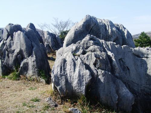 秋吉台の石灰岩<br /><br />