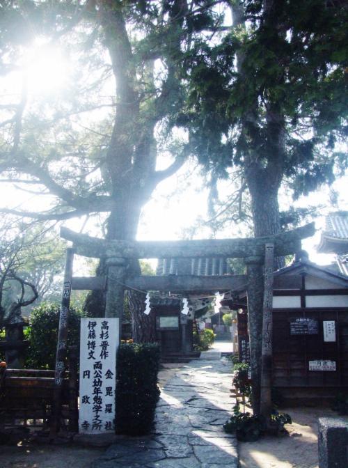 江戸屋横町に入ります、円政寺です。<br /><br />創建 建長6年(1254) 明治3年(1870)こちらに移転<br />本尊 地蔵菩薩<br />境内に金毘羅社が存し神仏習合の寺院、寺の山門の前に鳥居があります。<br /><br /><br />