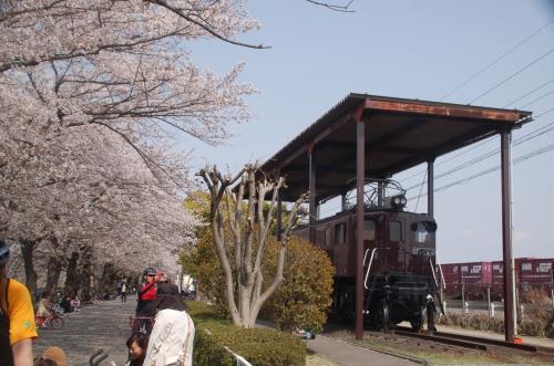 電気機関車も展示されている。