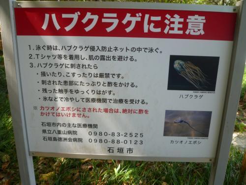 ハブクラゲに注意。カツオノエボシにも注意との看板発見。