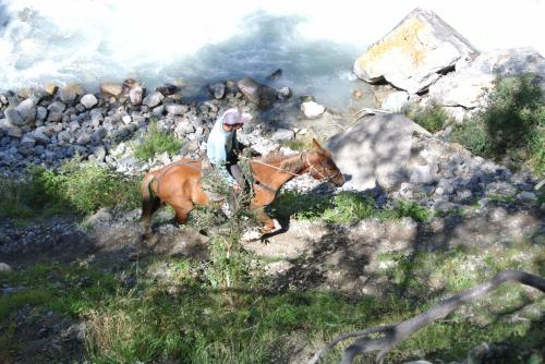 再び歩いて車のところへ戻ります。馬に乗った人も通ります。