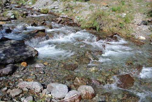 川の水は綺麗です。