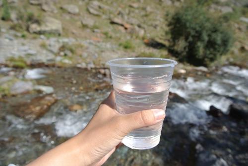 キルギス人は水の良さにはかなり誇りを持っているそうで、水道水もそのまま飲めるし川の水もそのまま飲めるし美味しい!と勧めてきます。確かに川の水は美味しいし、水道水も飲めないことはないけど水道管が老築化しているのでそのままはお勧めしないかな。日本人の家には浄水ポットがだいたいありました。