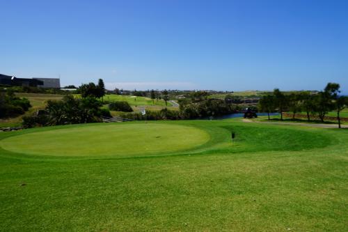 海沿いのコースってこんな感じなんですかねぇ。<br />12月のこの時点では、ゴルフ始めて半年ちょっとで、日本じゃ90後半から110くらいの間でラウンドしてるんですけど~。<br />全くもって駄目でした。