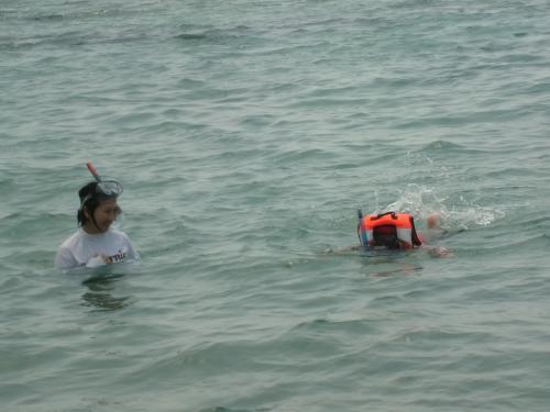突撃ーーー! という感じの次女の泳ぎ。一応、シュノーケルとマスクを<br />しているため魚が見えるようで、時々「おった!」と(シュノーケルした<br />まま)叫んでいる。苦笑する妻。