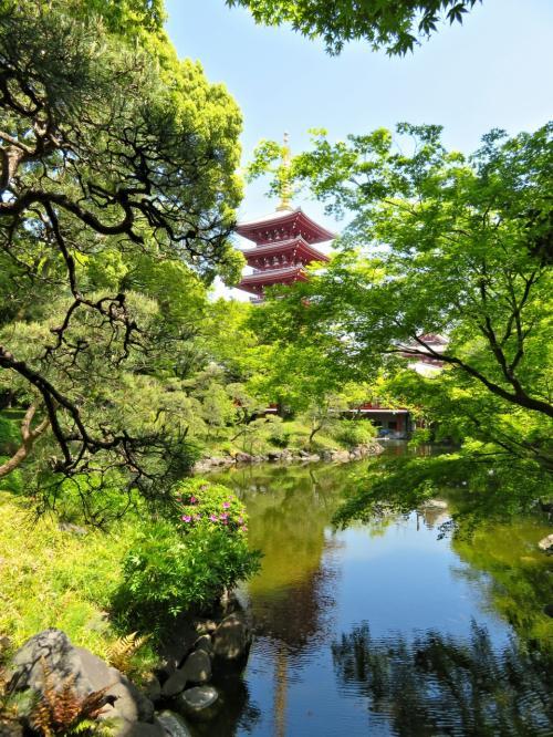 (*^Д^)ノ。・:*゜<br />約一万平方メートルの広さを持つ本庭園は回遊式庭園という特徴を持ち、園路に沿い歩みを進めることで様々な景観を楽しむことができま~す。<br />
