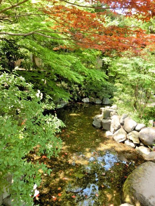 美しい秘庭を眺められます。