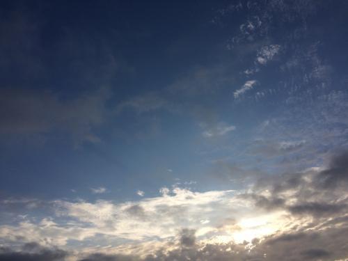前日よりも雲が薄くて、晴れ間から朝日が覗きました。