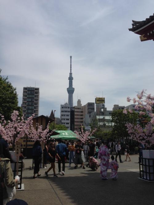 着物を来ている日本人、外人が多くいました。特に着物を来た日本人女性はは外人に写真撮っていいか聞かれまくってましたよ。