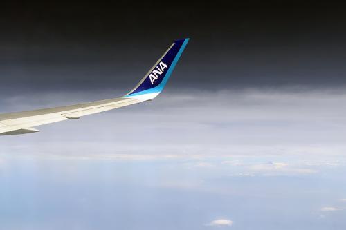 まずは、成田から香港へ向かいます。<br />と言うのも昨年購入したBUD/ZRH/BKK//HKG/ZRH/BUDのチケットを使う関係で香港往復はANAの特典航空券利用です。<br /><br />第一ランナーはNH809便B767-300ER、JA612Aでした。<br />
