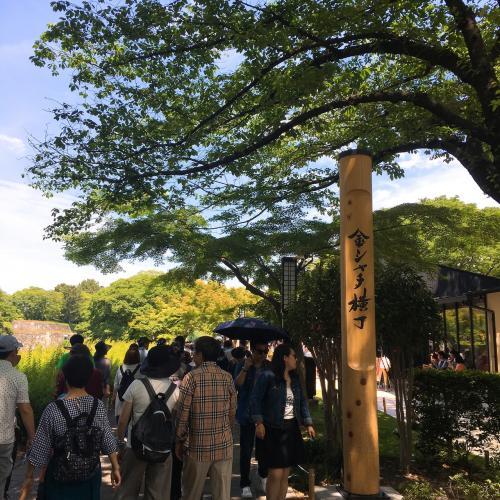 今年の3月29日にオープンした<br />名古屋城の『金シャチ横丁』。 <br />名古屋城周辺に新たなにぎわいを目的とする<br />商業施設としてオープンしましたが、<br />さて行く価値があるのでしょうか?(笑)<br /><br />とりあえずは新スポット!<br />沢山の人がいますよ(>_<)