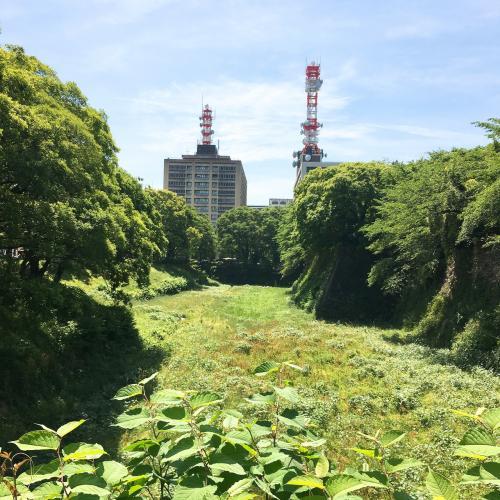 私達が目指すのは「義直ゾーン」なので<br />新緑の眩しいお堀を横目に移動します。