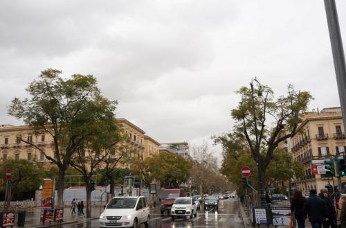 ローマともフィレンツェとも<br />ジェノバともナポリとも違う、<br />やっぱりパレルモはパレルモの街の<br />雰囲気がありました。<br />どこが?って言われても答えられないけど…<br /><br />ただ全体的に低層階で統一されてるのか<br />高い建物がないのでごちゃごちゃしてなく<br />スッキリしてます<br /><br />