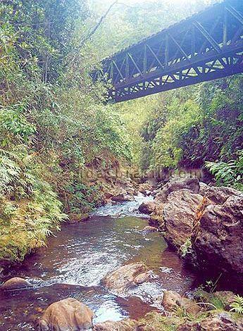 現在の Rio Turipui(トゥリプイ川)<br />1693年に Ouro Preto(オウロ・プレト)近郊を流れる Rio Turipui(トゥリプイ川)で黒い石が発見され、これが良質の金である事が分かった。Ouro Pretoはポルトガル語で「黒い金」の意である。