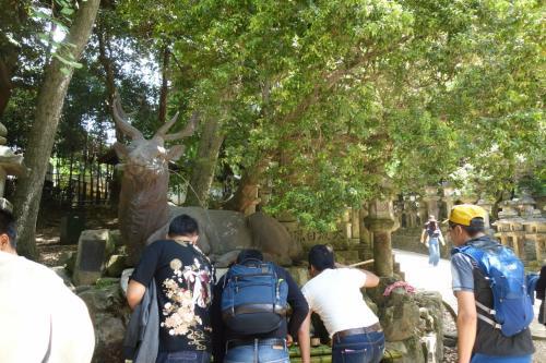 外国人観光客が柄杓から直接水をグビグビのんでた。<br />違うヨ~