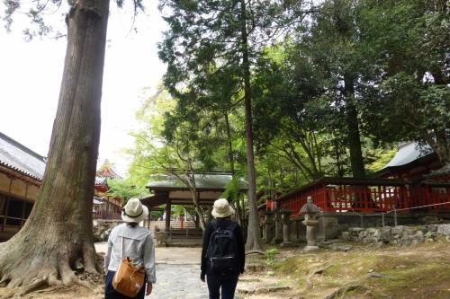 東大寺へ。