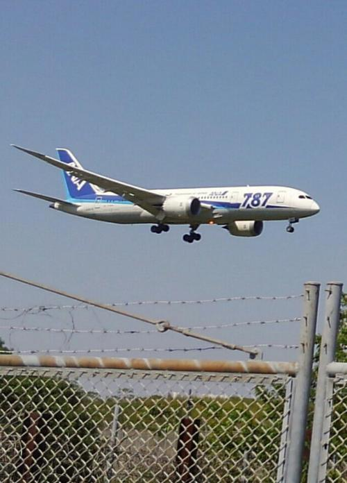NH(ANA) B-787 Dream Liner